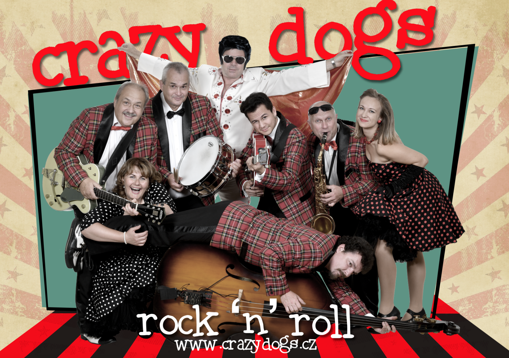 crazy dogs
